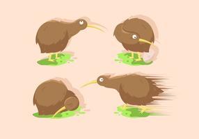 Insiemi dell'illustrazione di vettore dell'uccello di Kiwi