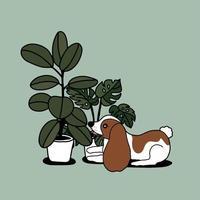 piante da appartamento disegnate a mano e cane carino