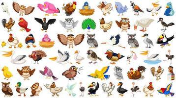 set di diversi uccelli in stile cartone animato isolato su bianco