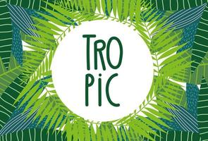 banner di fogliame tropicale
