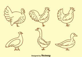 vettore delle icone della linea dei gallinacei