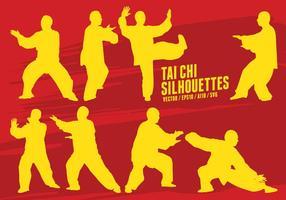 Arti marziali di Tai Chi vettore
