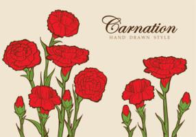 Illustrazione del fiore del garofano