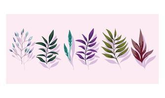 fogliame dei rami. flora verde natura design vettore