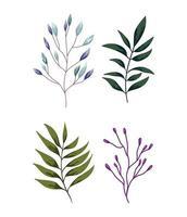 rami, fogliame, vegetazione. design della natura nel verde vettore