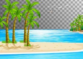 scena della natura spiaggia con sfondo trasparente vettore