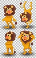 set di leone carino su sfondo trasparente