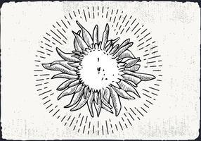 Sfondo di girasole disegnato a mano