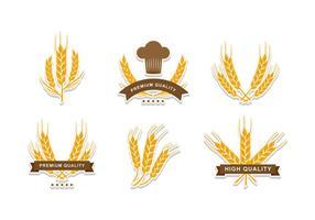 disegno vettoriale di elemento gambo di grano