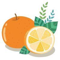 metà arancia fresca con foglie verdi vettore