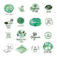 set di segni dell'acquerello disegnato a mano di alimenti biologici