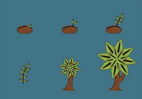 Illustrazione libera di vettore del ciclo di crescita di pianta
