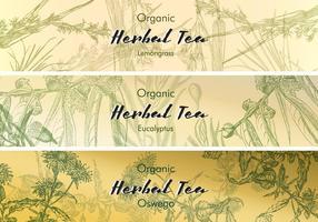 Etichette di tè d'epoca vettore