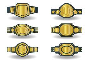 Vettore libero delle icone della cintura di campionato