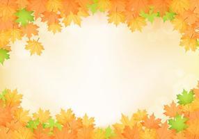 Vettore arancio delle foglie di acero di caduta