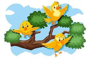 uccelli gialli felici che volano in natura