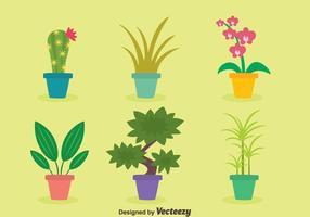 Vettori di piante d'appartamento piatte