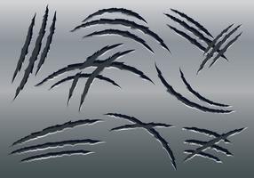 Vettore di marchi graffi artiglio