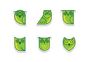 Coruja piatto verde