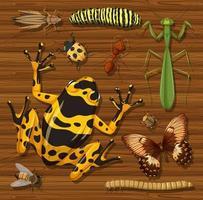 set di diversi insetti e creature sullo sfondo vettore