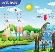 diagramma che mostra il percorso della pioggia acida