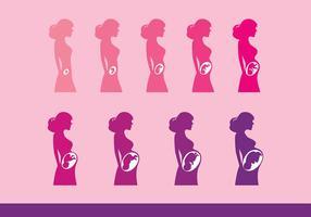 Vettori di maternità gratuiti