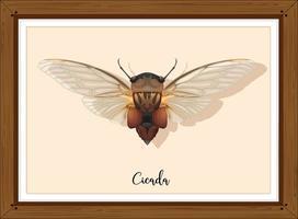cicala su telaio in legno