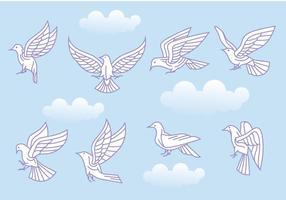 Paloma vettoriale stilizzato o variazioni di colomba