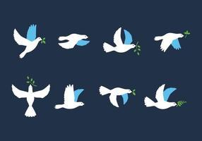 Paloma Bird con i vettori delle foglie
