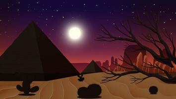 paesaggio desertico selvaggio di notte