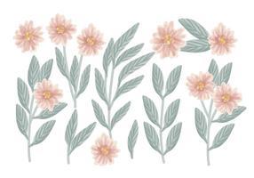 Composizioni floreali disegnati a mano di vettore