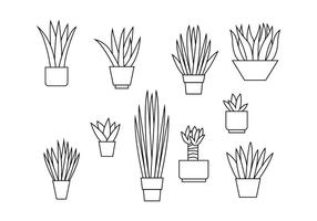 Yucca Line Illustration Vector gratuito