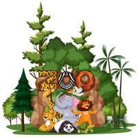 animali selvatici con segno zoo vettore