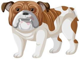 stile cartone animato boxer su sfondo bianco