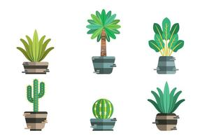 Pacchetto oggetti vettoriali Yucca