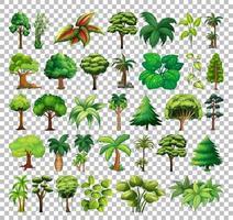 set di albero su sfondo trasparente