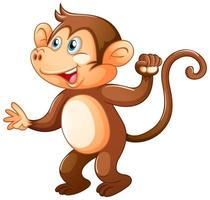 una scimmia carina su sfondo bianco