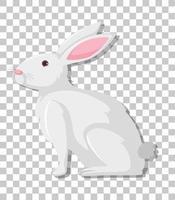 cartone animato coniglio bianco isolato su sfondo trasparente
