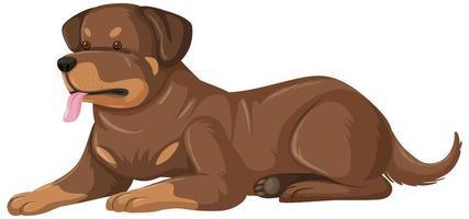 stile cartone animato rottweiler su sfondo bianco