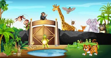 molti animali nel parco vettore