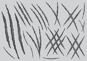 Graffi da artiglio vettore
