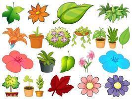 grande insieme di piante diverse su sfondo bianco vettore