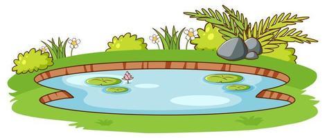 piccolo stagno con erba verde su sfondo bianco