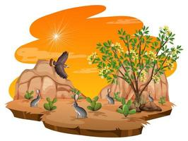cespuglio di creosoto pianta nel deserto selvaggio vettore