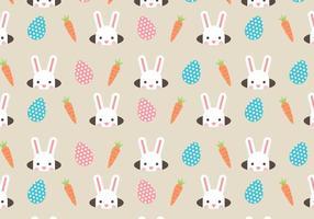 Conigli e carote vettore
