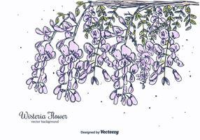 Fondo disegnato a mano di vettore del fiore di glicine