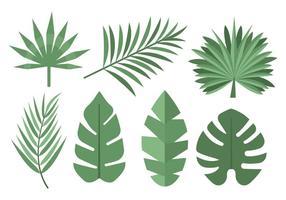 Vettore di foglie di palme tropicali