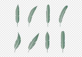 Set di icone di piuma