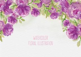 Illustrazione floreale dell'acquerello di vettore libero