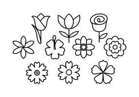 Linea di vettore dell'icona dei fiori
